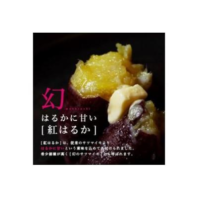 島津甘藷 熟成紅はるか 10kg(2L~2S)_AA-A701