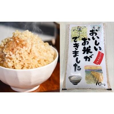 FY20-745 [令和2年産]「はえぬき玄米」10kg