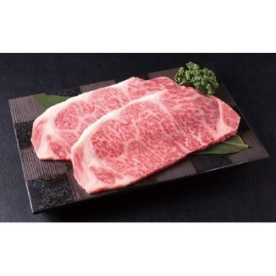 BG032_【風神の郷】佐賀牛サーロインステーキ500g(250g×2枚)