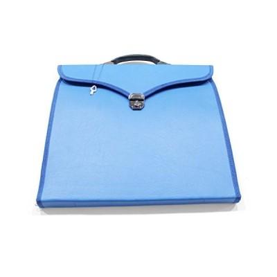 Masonic Regalia MM Apron File Case Royal ark Mariner Regalia Blue 並行輸入品