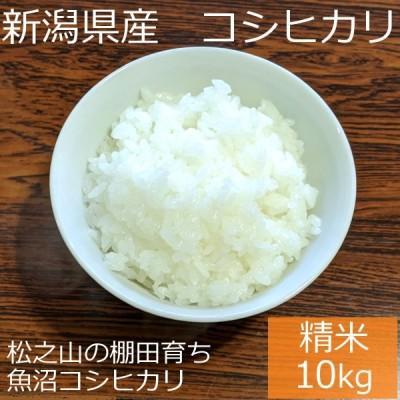 新潟県 十日町市産 魚沼コシヒカリ 新宅棚田米 令和2年産 精米 10kg