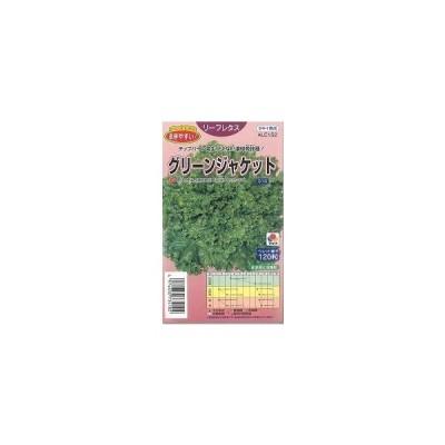 種子 レタス グリーンジャケット ペレット種子130粒 タキイ育成