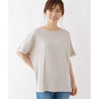 tシャツ Tシャツ 【M-L/洗える/吸水速乾/UVケア】スーピマコットンテレコ縦横切り替えプルオーバー