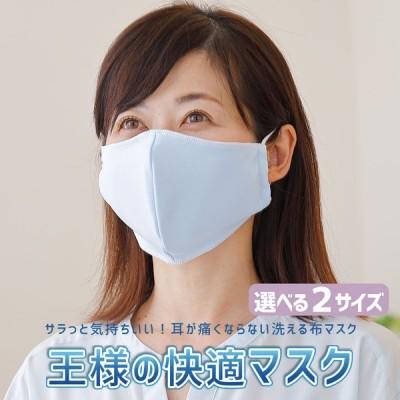 マスク 日本製 夏用 1枚 洗える 東洋紡ドライアイス素材 王様の快適マスク フィルターポケット付