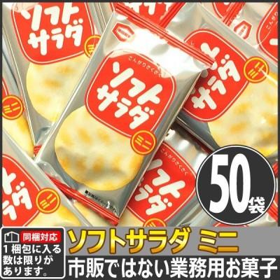 【同梱専用】亀田製菓 市販にはない業務用! ソフトサラダ ミニ 1袋 2.6g(1枚)×50袋
