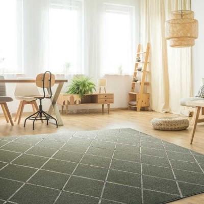 ラグ・カーペット・絨毯・マット PTT繊維カーペット アルテア GN(グリーン)130X190cm