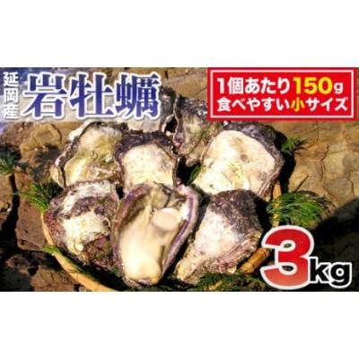 延岡産天然岩牡蠣(生食用)3kg(小)(2020年4月から発送開始)