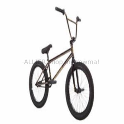 """BMX 2019フィットヴァンホーマン20 """"コンプリートBMXバイク21"""" TTスモーククローム  2019 Fit Van H"""