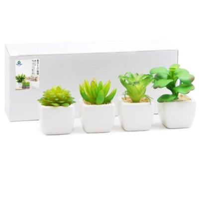 TOSSOW 人工多肉植物 ミニ 人工観葉植物 枯れない インテリア 4点セット 方形