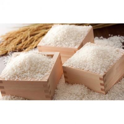 一等米 つや姫5kgはえぬき5kg食べ比べセット 山形県産