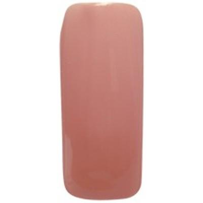 Nailly Gel(ネイリージェル) カラージェル 8g 022 M ピーチブラウン