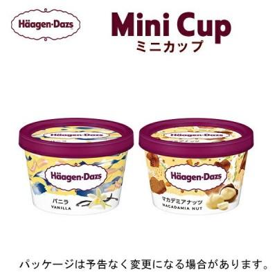 HD ハーゲンダッツ ミニカップ 12個セット バニラ・マカダミアナッツ(各6個)