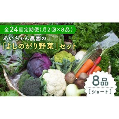 【8品 / 24回定期便】あいちゃん農園の「よしのがり野菜」セット(ショート) [FAA003]