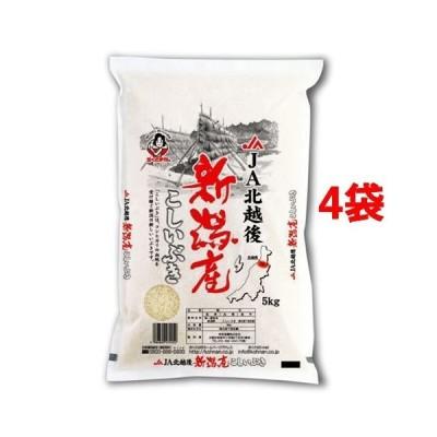 令和2年産 新潟産こしいぶき(国産) ( 5kg*4袋セット(20kg) )/ おくさま印