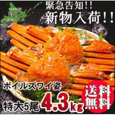 送料無料 特大ズワイガニ姿850g×5匹 計4.25kg 蟹 セット どっさり5尾セット 在庫処分 big_dr