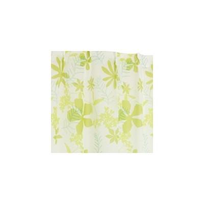 ds-1926506 8種類から選べる ボイルレースカーテン / 2枚組 100×198cm グリーン / 柄 物 ボタニカル 『ボイルアイリ』