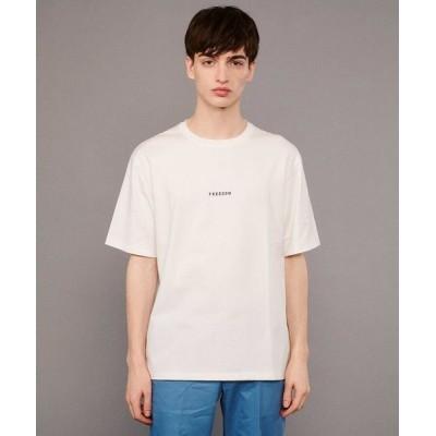 DRESSTERIOR/ドレステリア ミニロゴ天竺コットン(綿)Tシャツ ホワイト(001) 92(L)