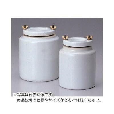 日陶 磁製ポットミル(ボール付)210mm ( AT-210                        5203 ) (メーカー取寄)