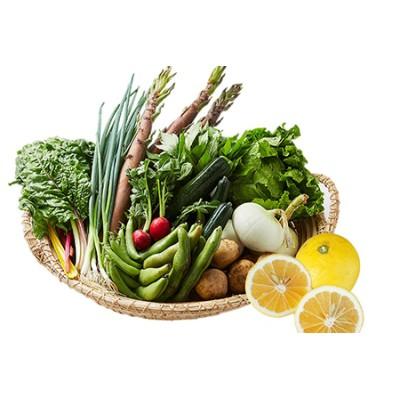 湯の花 旬の野菜と果物セット1年間の定期便