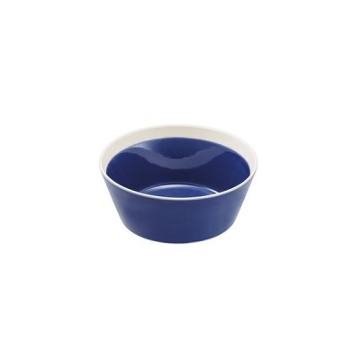 dishes bowl S ink blue