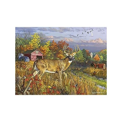 Buffalo Games - Hautman Brothers - Fall Colors - 1000 Piece Jigsaw Puzzle