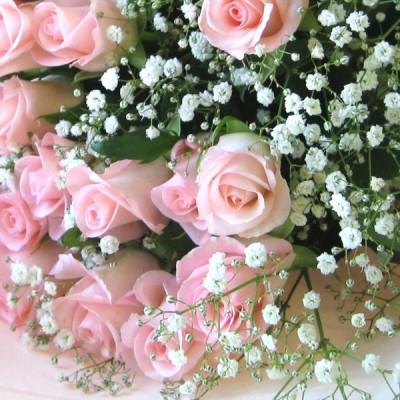 【生花】花束にオプション用のカスミソウ【価格は1本分です】【カスミソウは ※単品の場合は送料とラッピング代金が発生します
