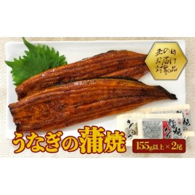 A1-0832/【土用丑の日】鹿児島産うなぎの蒲焼(無頭)155g以上×2尾