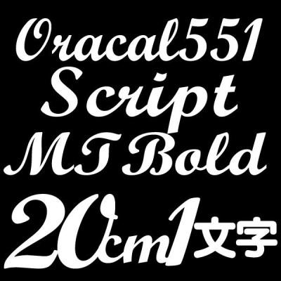 20センチ ScriptMTBold Oracal551 デカール 切文字シール カッティングシール カッティングステッカー マーキングフィルム カッティングデカール
