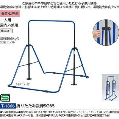 トーエイライト 体つくり バランス感覚 折りたたみ鉄棒SG65 T-1866 <2021CON>