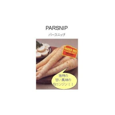 【世界の根菜】パースニップ/小袋