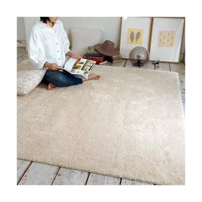 ラグマット カーペット 洗えるラグ シャギーラグ ラグ 絨毯 190×190cm 2畳 北欧 おしゃれ 丸洗い 滑り止め マイク