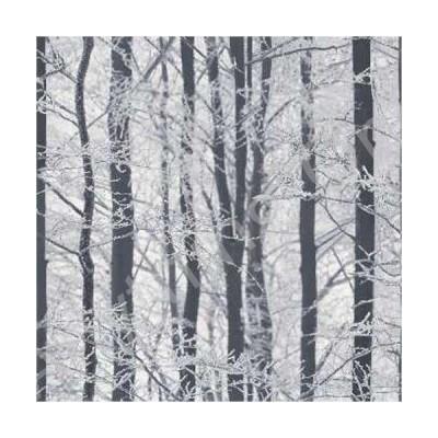 新品 Arthouse Imagine Forest Wood Silver Wallpaper 670200 - Glitter Birch Tree Branch by Arthouse並行輸入品