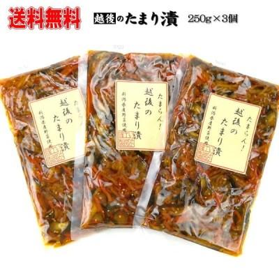 越後のたまり漬 3個セット 送料無料 新潟県産野菜 お取り寄せグルメ きなせや本舗