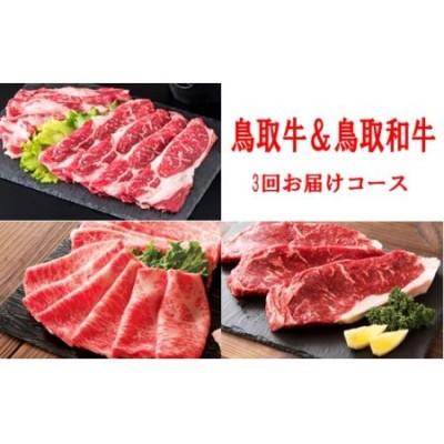 TT02:鳥取牛&鳥取和牛堪能♪すき焼きコース【3回お届けコース】