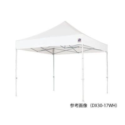 イージーアップ テント 収納カバー付き 2500×2500×3020〜3100 DX25-17WH 1個 7-2829-01(直送品)
