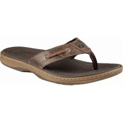 Sperry Top-Sider メンズサンダル Sperry Top-Sider Baitfish Thong Brown