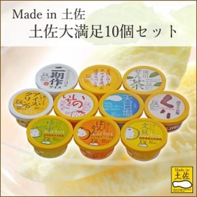 高知アイス Made in 土佐大満足10個セット