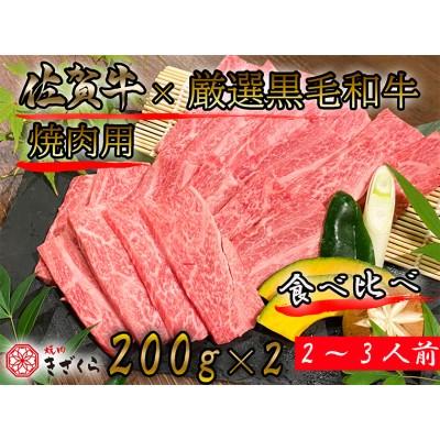 DX003_佐賀牛×厳選黒毛和牛 焼肉用食べ比べ400g