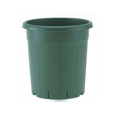 アップルウェアー バラ鉢 10号 グリーン