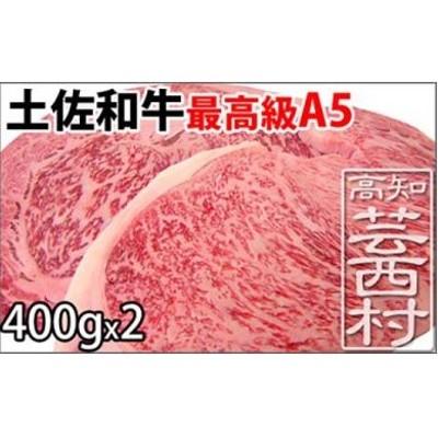 土佐和牛A5特選サーロイン&リブロースステーキ400g×2枚セット 牛肉