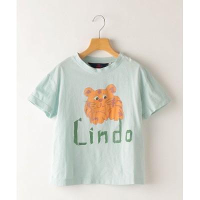 【シップス】 The Animals Observatory:Blue Lindo Rooster T-Shirt(100~130cm) キッズ ライト ブルー 100 SHIPS