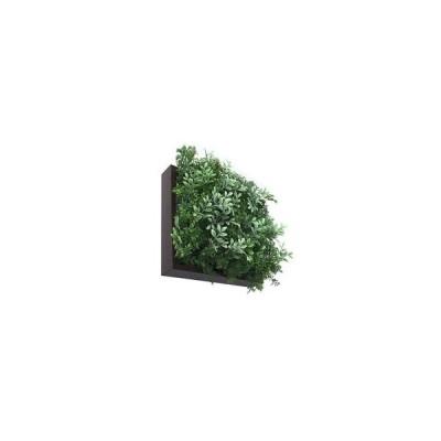 Shibafu 立体グリーン 芝生 ハーブミックス 300 BR ISH-52829