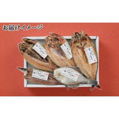 61.ふっくらやわらか 干物 5点セット 北海道 魚介 海鮮 真ホッケ サンマ カレイ ニシン サバ 秋刀魚 宗八鰈 鰊 鯖