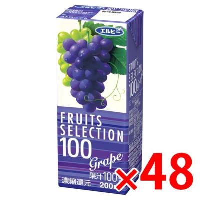 エルビー フルーツセレクション グレープ 200ml紙パック×24本×2ケースセット(合計48本) ぶどうジュース