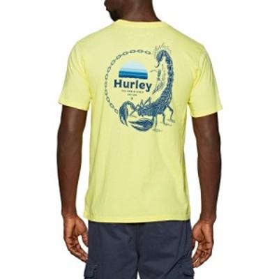 ハーレー Hurley メンズ Tシャツ トップス everyday washed drop in short sleeve t-shirt Lt Zitron