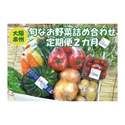 泉州産 季節の 野菜 詰め合わせ セット小【定期便 2カ月コース】_0011-2