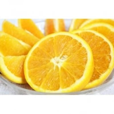 【美浜町】【ご家庭用】希少な国産バレンシアオレンジ 約7kg