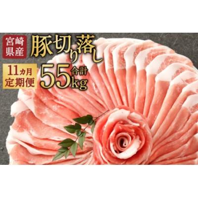 宮崎県産「豚肉切り落とし」定期便<毎月5kg×11回>合計55kg【F17】