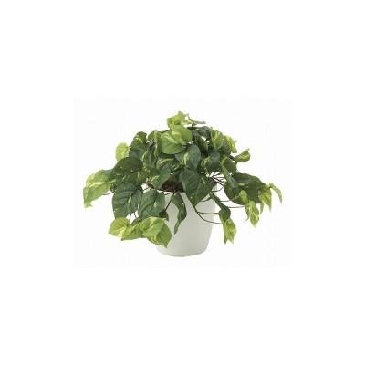 《アートグリーン》《人工観葉植物》光触媒 光の楽園 フレッシュポトス