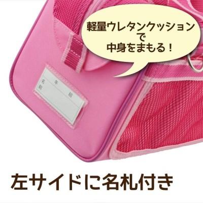 サクラクレパス 絵の具セット メッシュR6 ピンク EWZ-R6#20